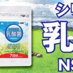 シリンゴル乳酸菌 NS-MAX